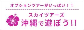 スカイツアーズの沖縄で遊ぼう!!